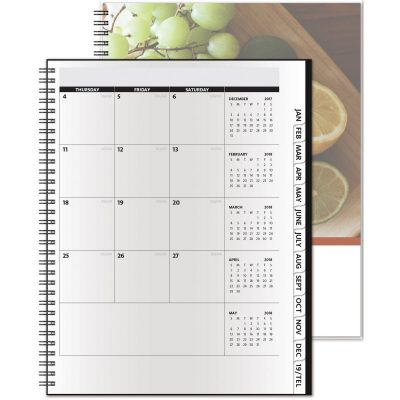 "TheAnalyst™ ClearView™ Monthly Planner (8.5""x11"")"